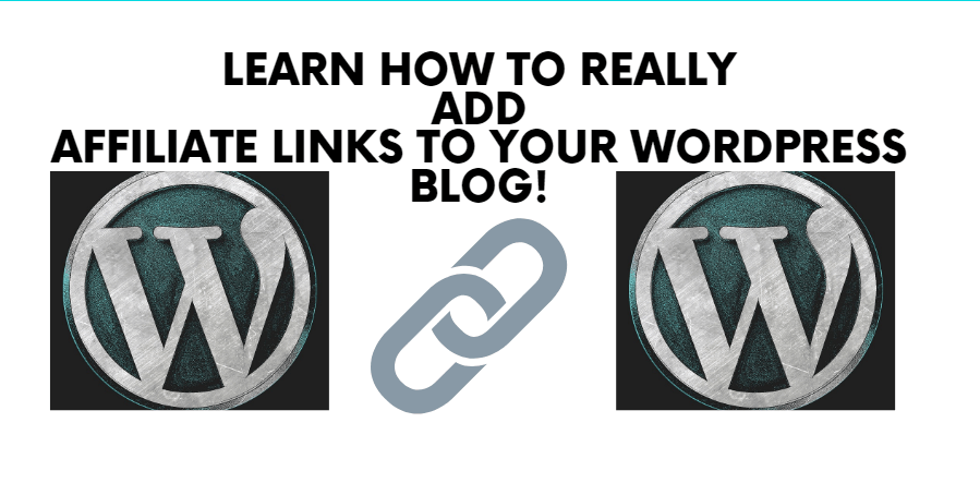 How to Add Affiliate Links to Your WordPress Blog? Add Value First! And Don't Make Dumb Mistakes Along the Way!